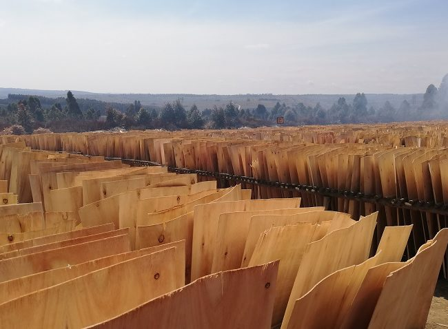 African Wood Products Investments